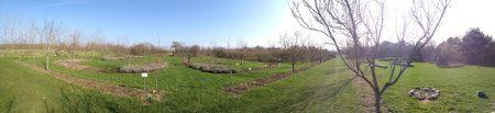 A kert látványa panorámafelvételen, színtiszta precizitás