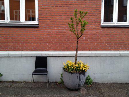 Utcarészlet Aarhusban